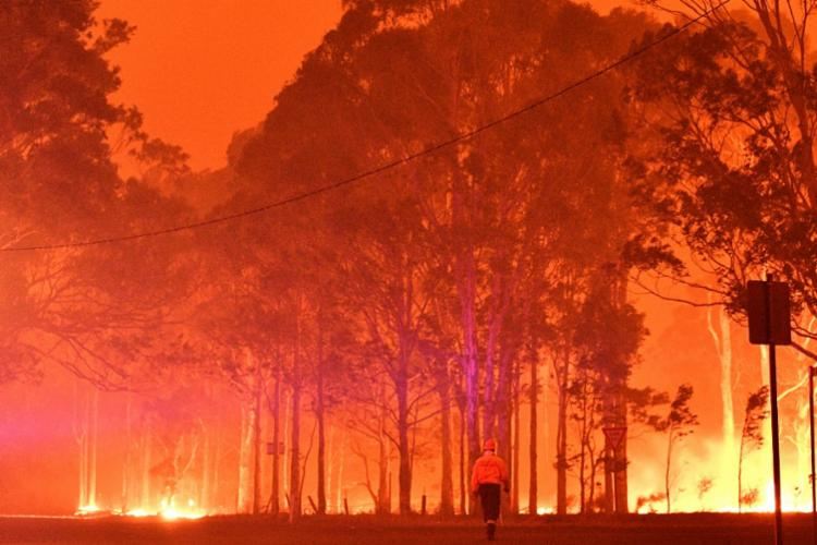 Incêndios já devastaram área de mais de oito milhões de hectares | Foto: Saeed Khan | AFP - Foto: Saeed Khan | AFP
