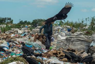 Olhar Cidadão: lei de descarte de resíduos é descumprida no extremo sul | Adelmo Borges | Ag. A TARDE