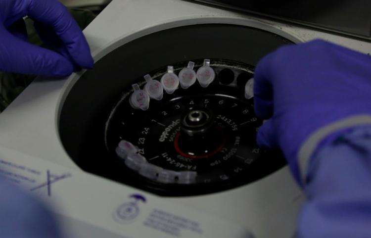 Esforços concentram-se agora na prevenção e controle da epidemia | Foto: Divulgação | Josué Damascena | Fiocruz - Foto: Divulgação | Josué Damascena | Fiocruz