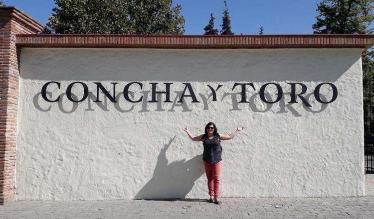 Chegada á vinícola Concha y Toro para tour em português | Foto: Luis Jaras - Foto: Luis Jaras