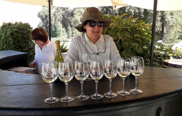Guia Claudia Bustos explica o tipo de vinho para a degustação | Foto: Thaís Seixas | Ag. A TARDE