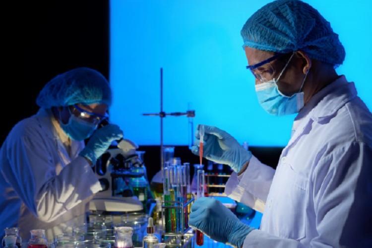 Cientistas conseguiram definir a espécie do novo coronavírus no país | Foto: Reprodução | Freepik - Foto: Reprodução | Freepik
