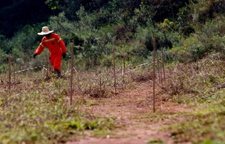 Pesquisadores buscam soluções para reparação de danos | Foto: Tânia Rêgo | Agência Brasil - Foto: Tânia Rêgo | Agência Brasil