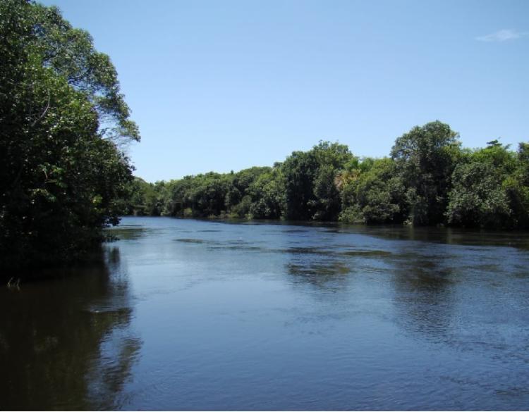 Estudo desmitificou o tamanho da contribuição da região na vazão do rio | Divulgação | Abapa - Foto: Divulgação | Abapa