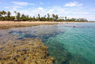 Etapa do Verão Costa a Costa em Maraú é cancelada | Reprodução