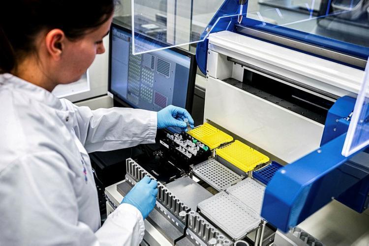 A novidade foi publicada por uma equipe de cientistas chineses na revista National Science Review | Foto: Rob Engelaar | ANP | AFP - Foto: Rob Engelaar | ANP | AFP
