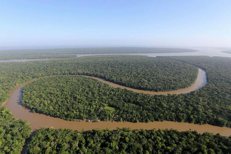 O número das multas ambientais reduziu no momento em que a devastação na Amazônia bate recorde na década | Foto: Cristiano Martins | Ag. Pará - Foto: Cristiano Martins | Ag. Pará