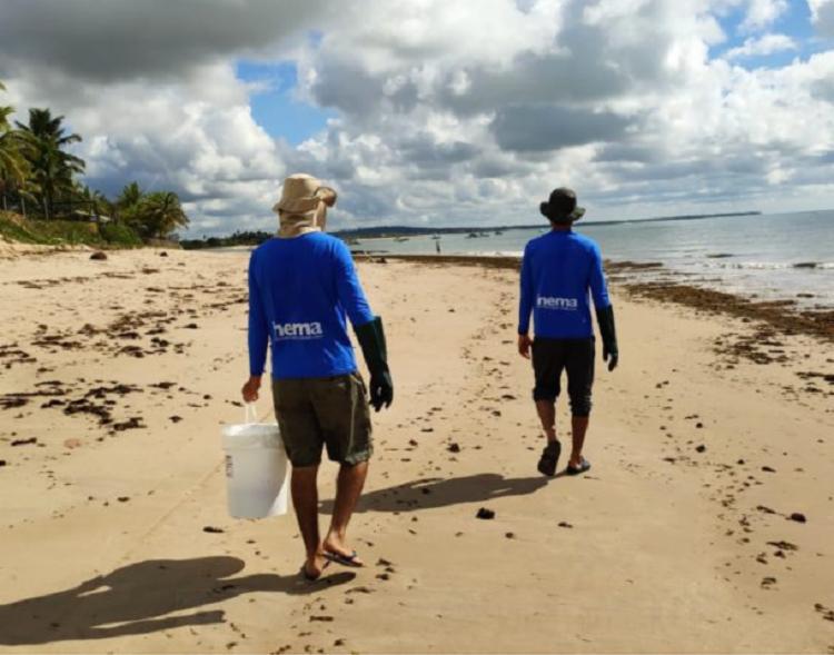 Ainda podem ser encontradas pequenas pelotas nas areias que são trazidas pelo mar   Foto: Divulgação   Inema - Foto: Divulgação   Inema