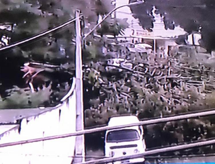 No Cabula, a queda de uma árvore bloqueou a via | Foto: Reprodução | Jornal da Record - Foto: Reprodução | Jornal da Record