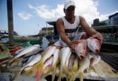 Pescadores têm acesso liberado para garantir frutos do mar nas praias | Foto: Raul Spinassé | Ag. A TARDE