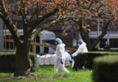 EUA batem novo recorde de mortes por Covid-19 | Reprodução