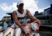 Pescadores seguem com livre acesso às praias da capital | Raul Spinassé | Ag. A TARDE