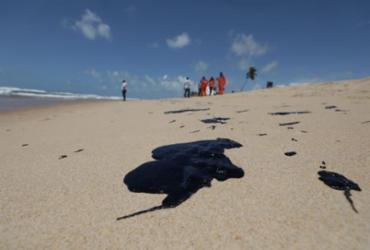 Nova análise aponta situação do pescado na Bahia após manchas de óleo | Adilton Venegeroles | Ag. A TARDE