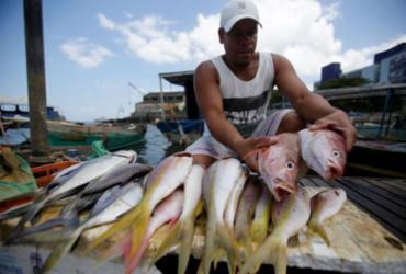 Pescadores têm acesso liberado para garantir frutos do mar nas praias | Raul Spinassé | Ag. A TARDE