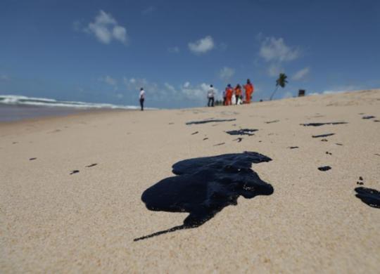 Nova análise aponta situação do pescado na Bahia após manchas de óleo   Adilton Venegeroles   Ag. A TARDE