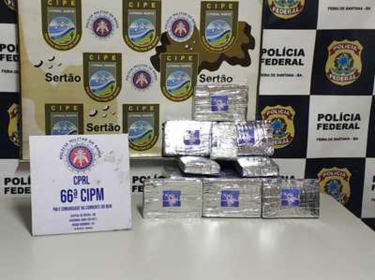 Droga foi encontrada em um imóvel no bairro de Nova Cidade | Foto: Divulgação | SSP - Foto: Divulgação | SSP