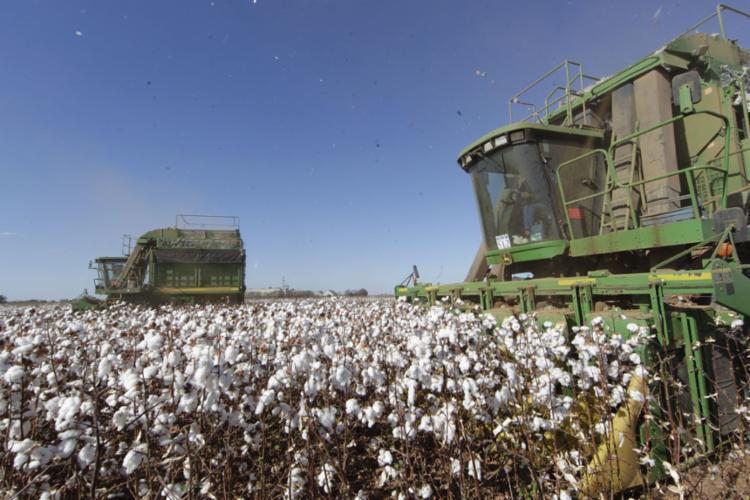 Empresários se unem ao poder público para enfrentar a pandemia | Foto: Carlos Casaes | Ag. A TARDE - Foto: Carlos Casaes | Ag. A TARDE