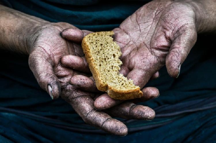 Avaliação é do ex-diretor da FAO José Graziano | Foto: Reprodução | Freepik - Foto: Reprodução | Freepik