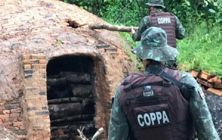 A prisão em flagrante foi realizada nesta segunda-feira, 27, após denúncia anônima de crime ambiental   Foto: Divulgação   SSP-BA - Foto: Divulgação   SSP-BA