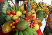 Fruticultura aposta em novos hábitos | Foto: Divulgação | Seagri-BA