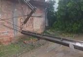 Árvore cai e derruba poste de energia em Paripe | Foto: Reprodução | Paripe.net