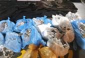 Traficante de drogas é preso em flagrante na Polêmica, em Brotas | Foto: Divulgação | SSP-BA