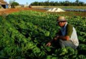 Produtores rurais debatem plano | Foto: Antonio Costa | Fotos Públicas