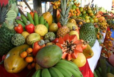 Fruticultura aposta em novos hábitos | Divulgação | Seagri-BA