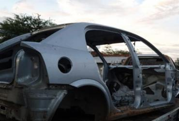 Polícia descobre desmanche de veículos ilegal e criação de aves silvestres em cativeiro