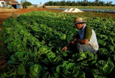 Produtores rurais debatem plano | Antonio Costa | Fotos Públicas
