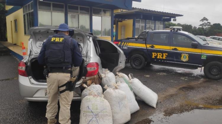 Uma grande quantidade de dinheiro também foi apreendida na ação | Foto: Divulgação | PRF - Foto: Divulgação | PRF