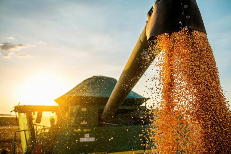 A soja alcançou o faturamento de US$ 11,5 bilhões | Foto: Aiba | Divulgação - Foto: Aiba | Divulgação