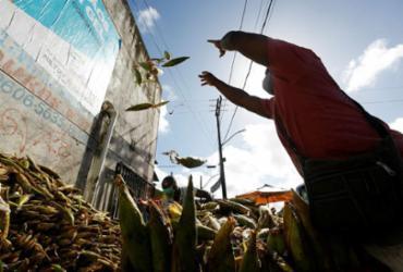 Feirantes de São Joaquim descarregam carga de milho para comercialização | Foto: Rafael Martins | Ag. A TARDE - Rafael Martins | Ag. A TARDE