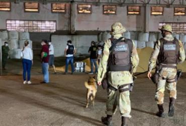Polícia apreende cocaína que iria para Holanda