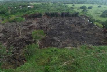 Regiões registram alta em incêndios no começo da temporada de queimadas   Divulgação   MPPB