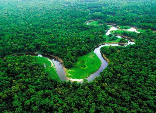 Mau uso de químicos pode lesar meio ambiente | Reprodução