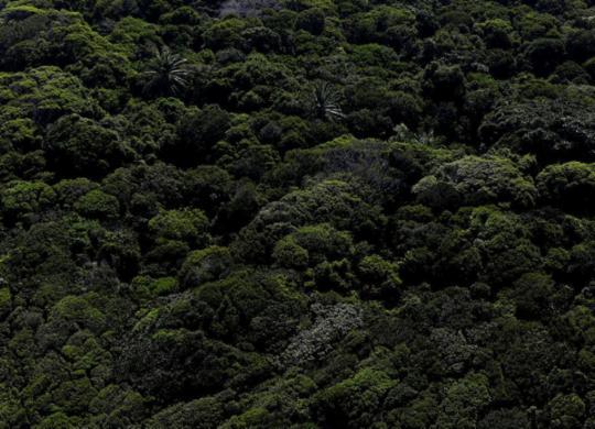Bahia inicia elaboração dos inventários de Gases de Efeito Estufa | Raul Spinassé | Ag. A TARDE
