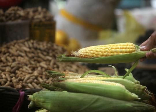 Preços de alimentos sobem no período da pandemia   Felipe Iruatã   Ag. A TARDE