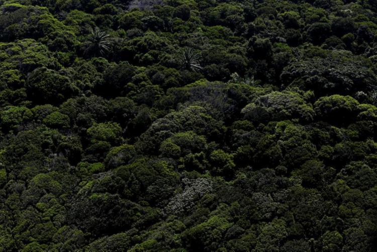 Atualização da Política de Mudanças Climáticas do Estado determinará metas | Foto: Raul Spinassé | Ag. A TARDE - Foto: Raul Spinassé | Ag. A TARDE