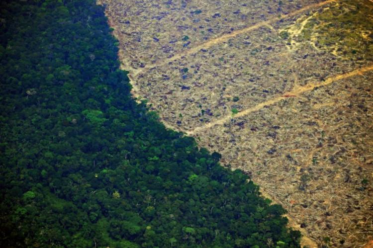 Um total de 829 km² da Floresta Amazônica foi desmatado em maio | Foto: Carl de Souza | AFP - Foto: Carl de Souza | AFP