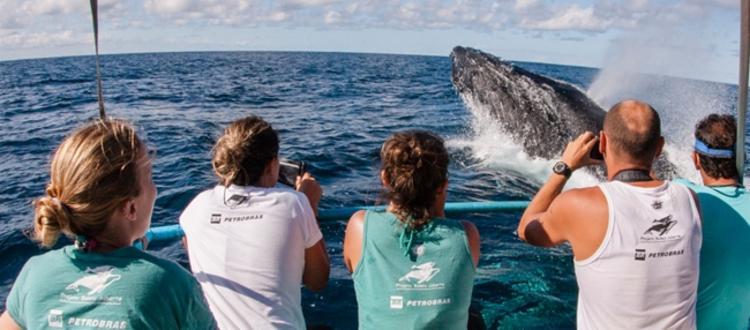 Coordenador do projeto acredita em recuperação da natureza | Foto: Divulgação - Foto: Divulgação