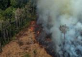 Decreto proíbe queimadas na Amazônia e no Pantanal por 120 dias | Foto: