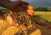 Safra de grãos terá novo recorde | Foto: Jonas Oliveira | ANPr | Divulgação
