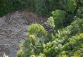 Governo demite chefe de monitoramento do Inpe após alta no desmatamento | Foto: Agência Brasil