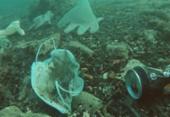 Plástico nos oceanos pode chegar a 600 milhões de toneladas em 2040 | Foto: Divulgação | Opération Mer Propre
