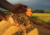 Safra de grãos terá novo recorde | Jonas Oliveira | ANPr | Divulgação