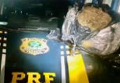 Empresário sem CNH é preso com maconha na BR-116 | Divulgação | PRF