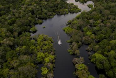 Amazônia tem pior mês de junho em 13 anos por incêndios florestais   Florence Goisnard   AFP