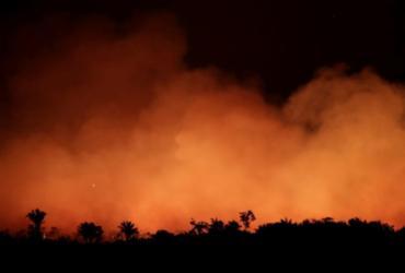 Amazônia registra em junho o maior número de focos de queimadas dos últimos 13 anos | Agência Brasil