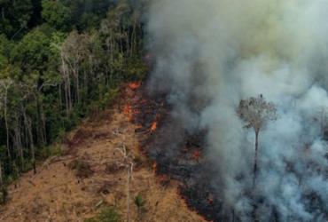 Decreto proíbe queimadas na Amazônia e no Pantanal por 120 dias  